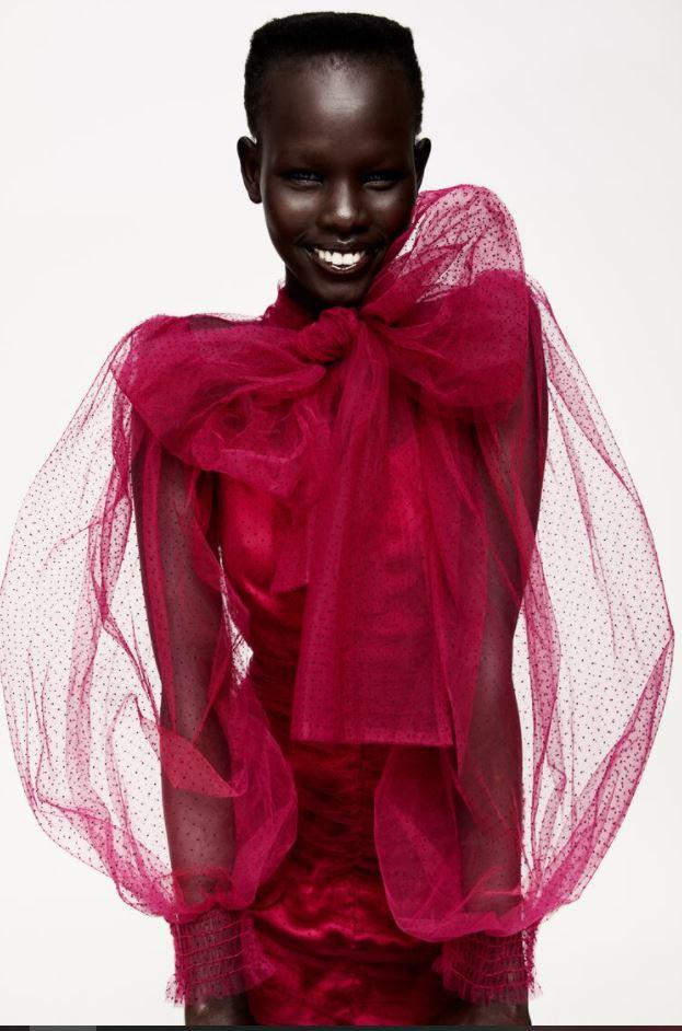 Zara Dotted Mesh Tulle Dress £59.99
